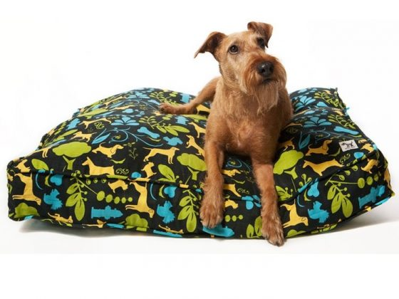 Molly Mutt Dog Duvet 1