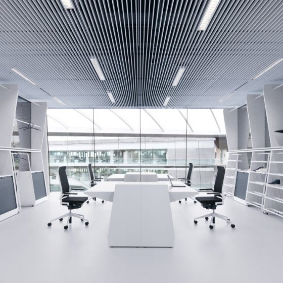 natural_light_office