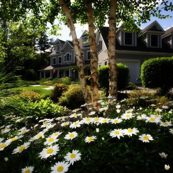 Garden Tool editorial draft 2