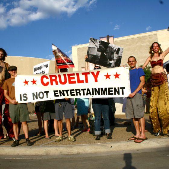 ADI Animal Defenders International